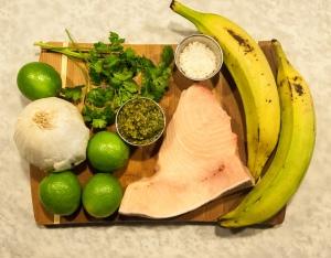 DearWorldTraveler - Cuban Ceviche Recipe